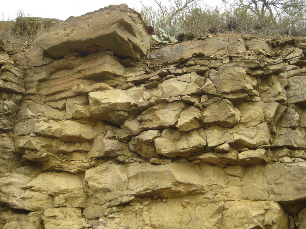 Ford Fort Worth >> North Texas geology - Rock & shale Types